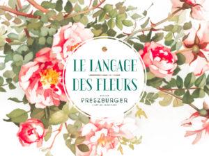 Le langage et la symbolique des fleurs pour un mariage floral. Laura a sélectionné des fleurs pour vous aider dans la préparation de votre mariage.